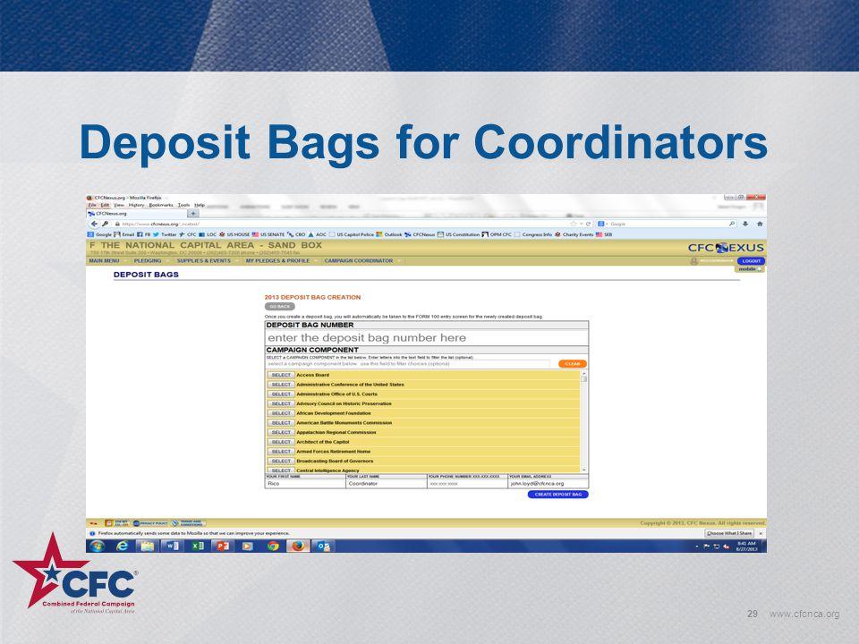 Deposit Bags for Coordinators