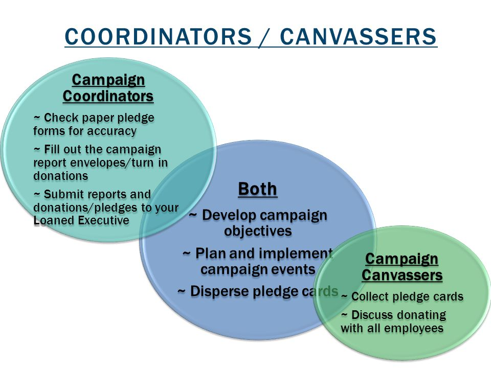 Coordinators / canvassers