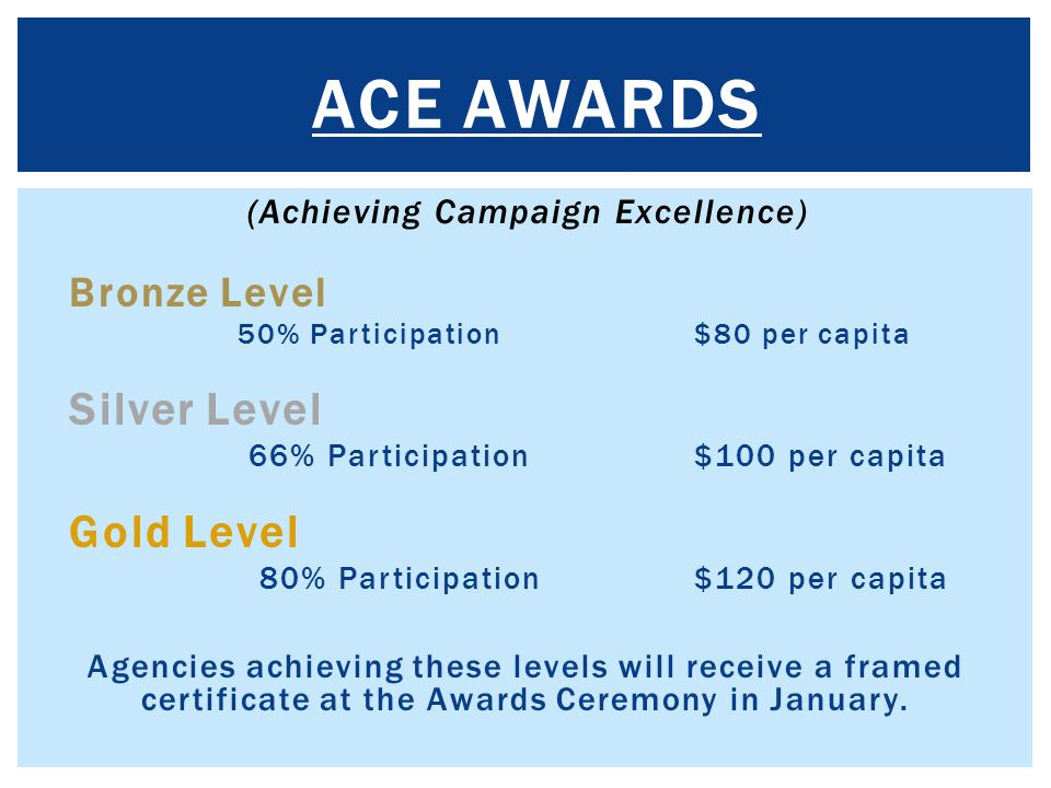 (Achieving Campaign Excellence)