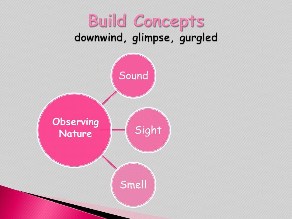 Build Concepts downwind, glimpse, gurgled