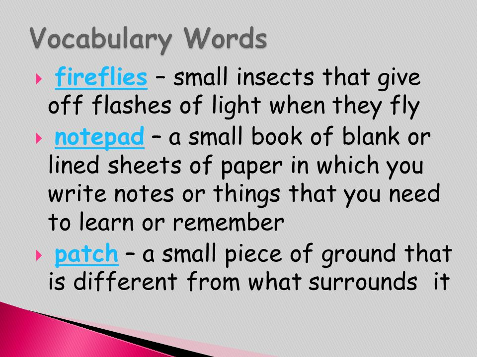 Vocabulary Words fireflies – small insects that give off flashes of light when they fly.