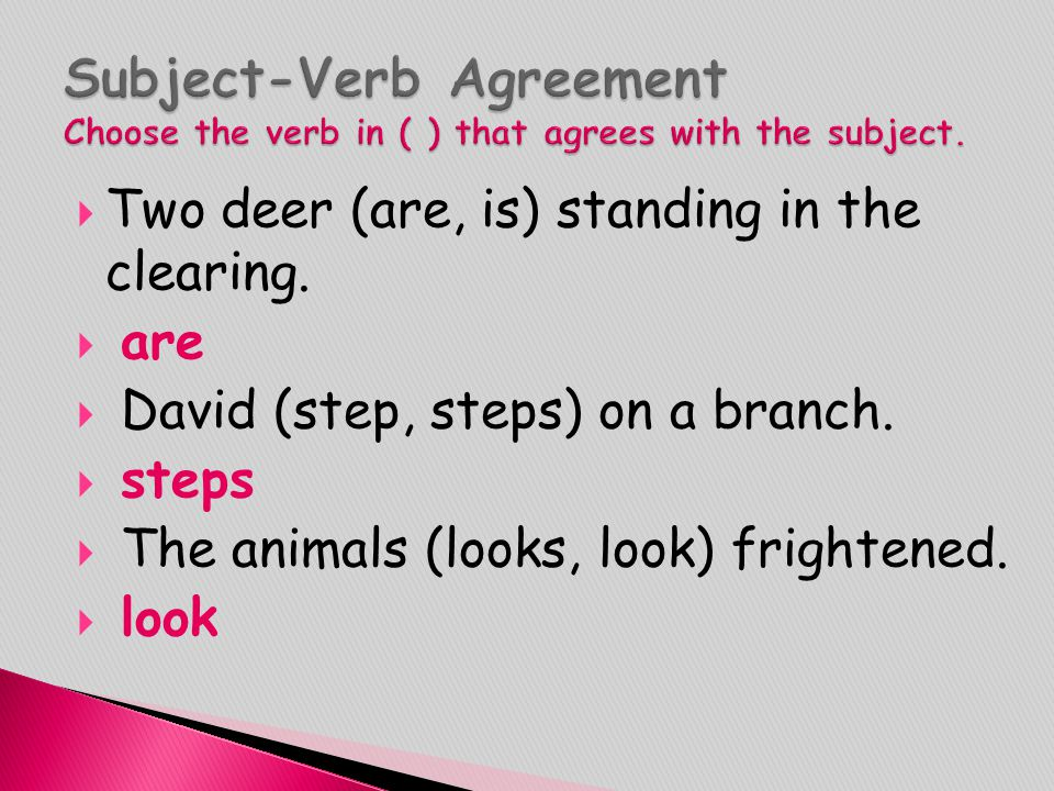 Subject-Verb Agreement Choose the verb in ( ) that agrees with the subject.