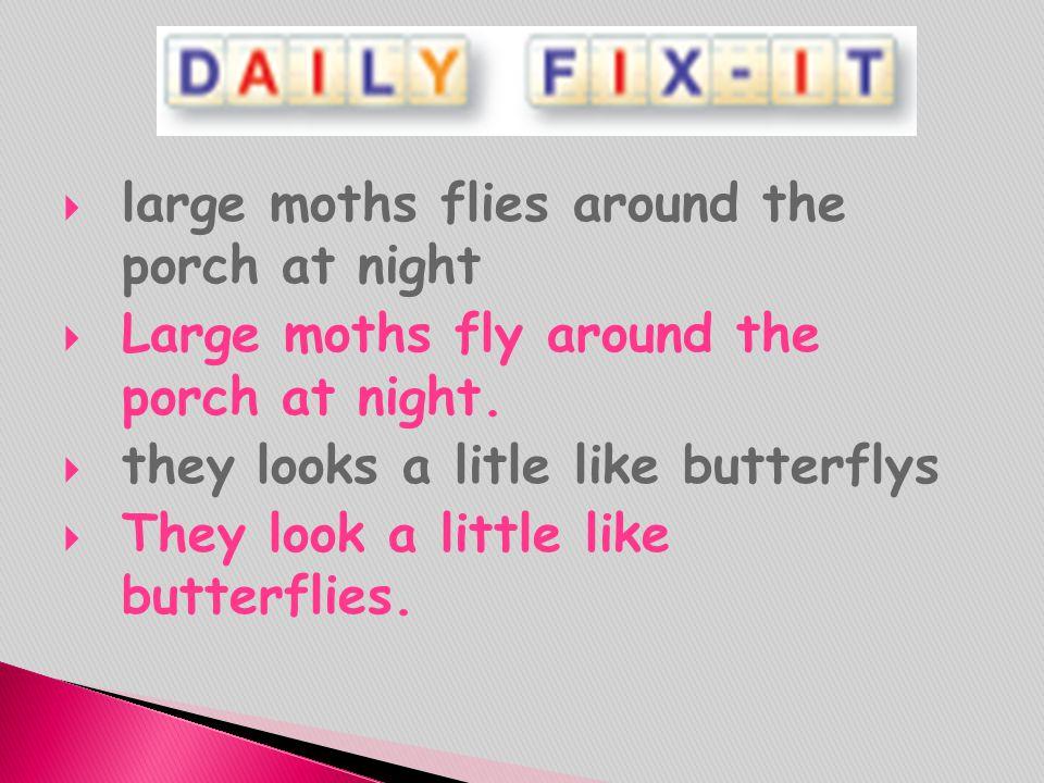 large moths flies around the porch at night