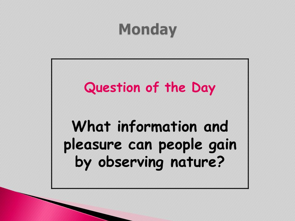 What information and pleasure can people gain by observing nature