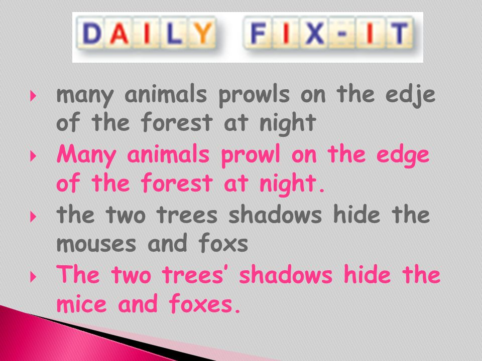 many animals prowls on the edje of the forest at night