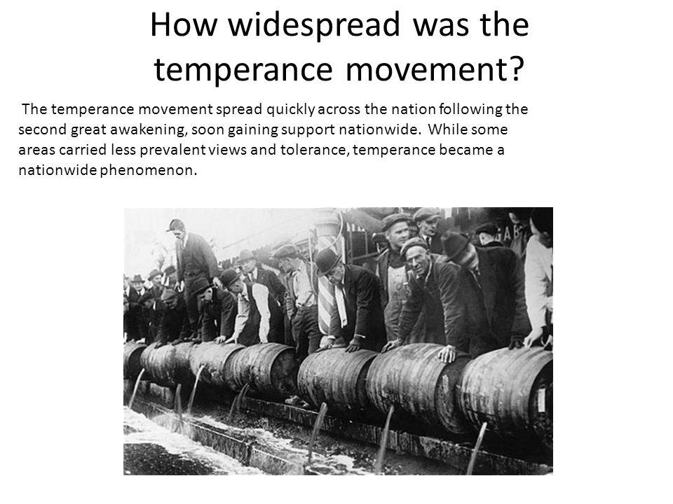 How widespread was the temperance movement