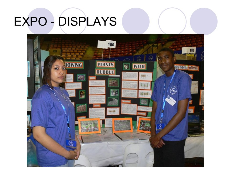 EXPO - DISPLAYS