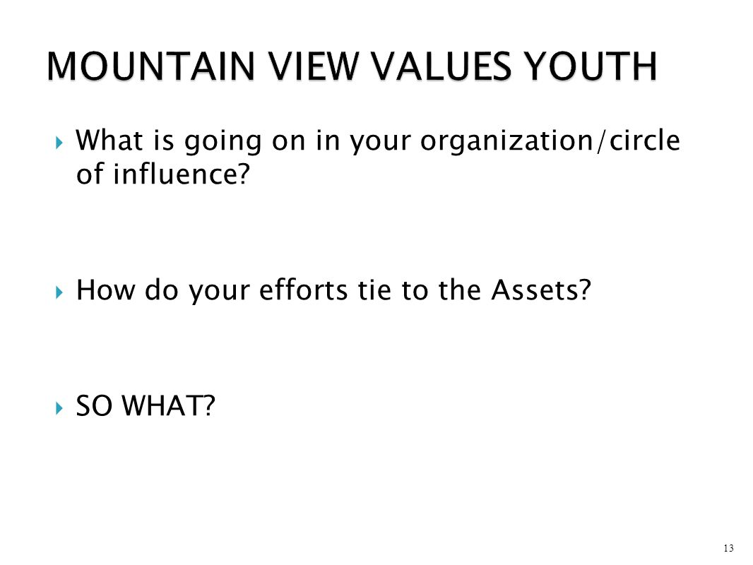 MOUNTAIN VIEW VALUES YOUTH