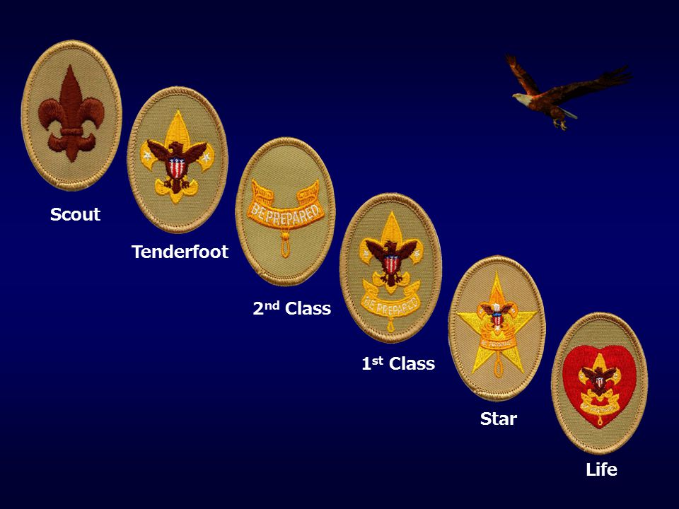 Scout Tenderfoot 2nd Class 1st Class Star Life
