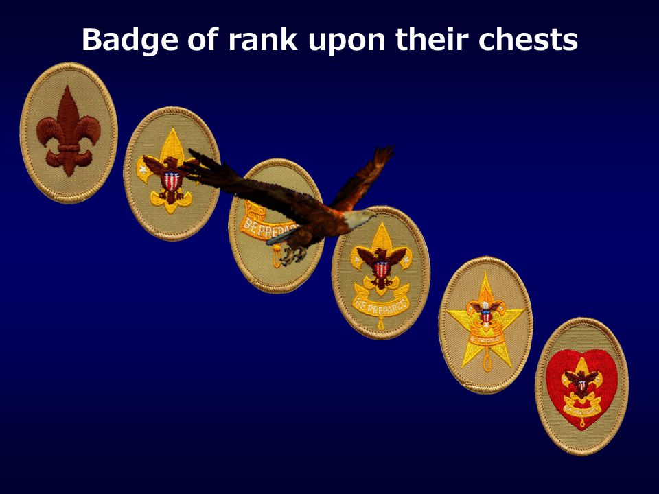 Badge of rank upon their chests