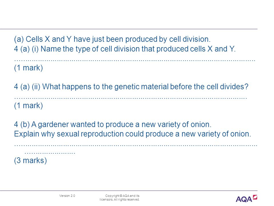 (a) Cells X and Y have just been produced by cell division.