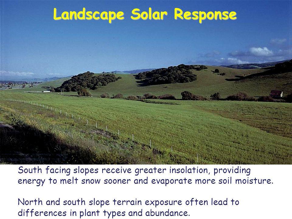 Landscape Solar Response