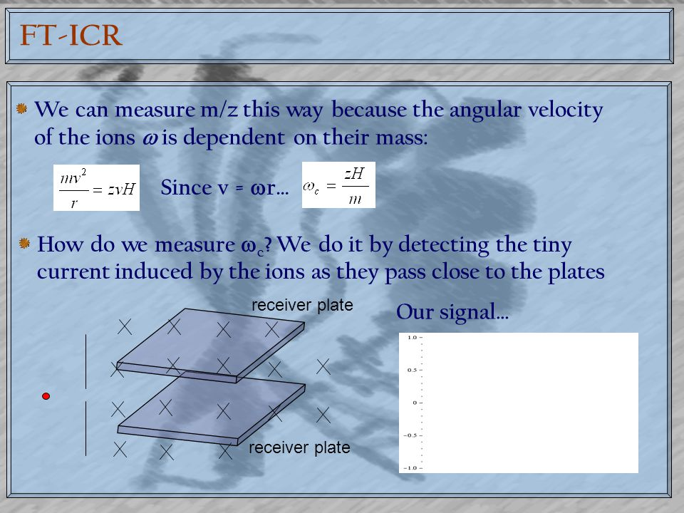 FT-ICR We can measure m/z this way because the angular velocity of the ions  is dependent on their mass: