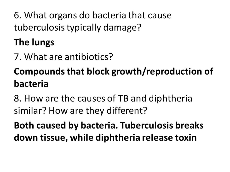 6. What organs do bacteria that cause tuberculosis typically damage