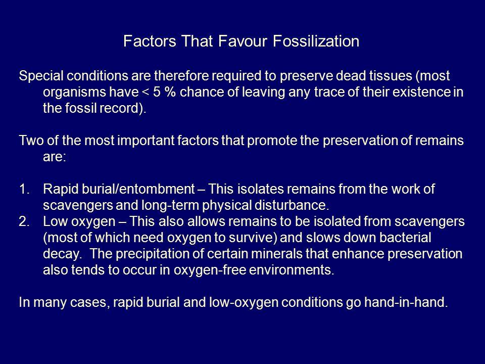 Factors That Favour Fossilization