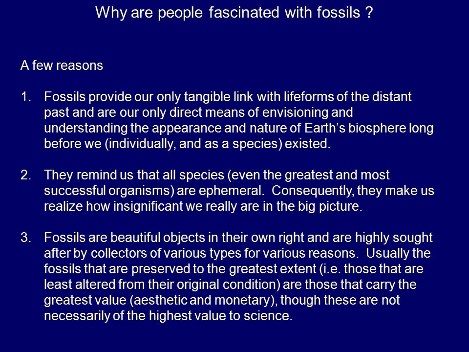 Why are people fascinated with fossils