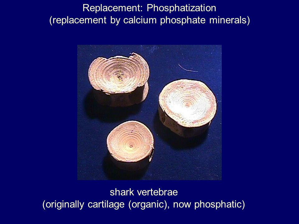Replacement: Phosphatization