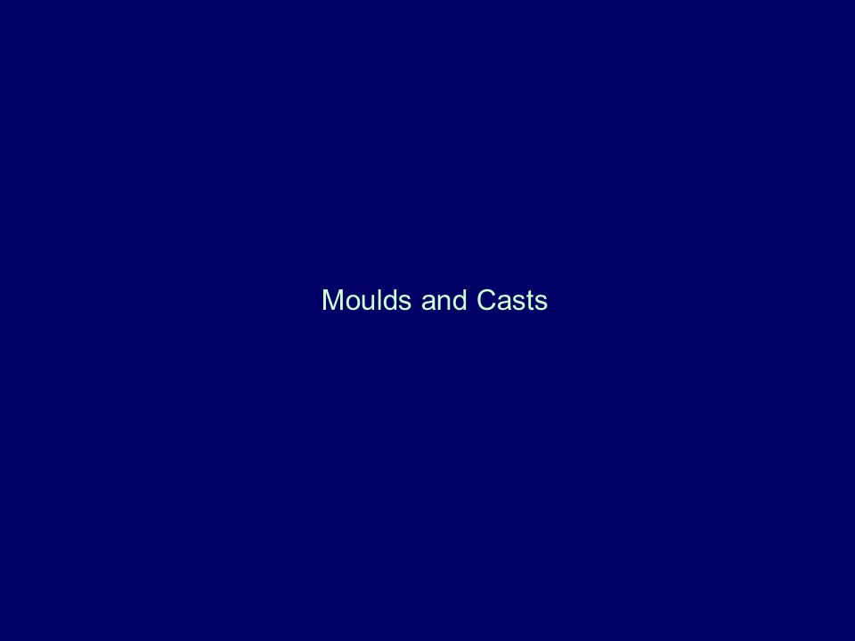 Moulds and Casts