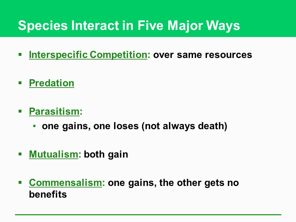 Species Interact in Five Major Ways
