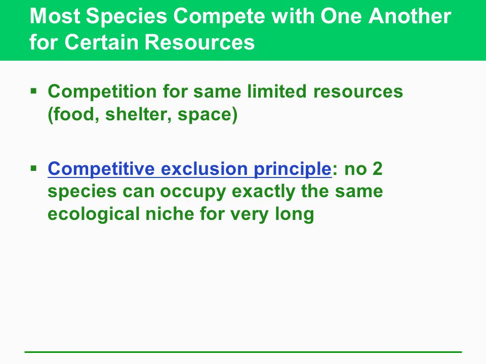 Most Species Compete with One Another for Certain Resources