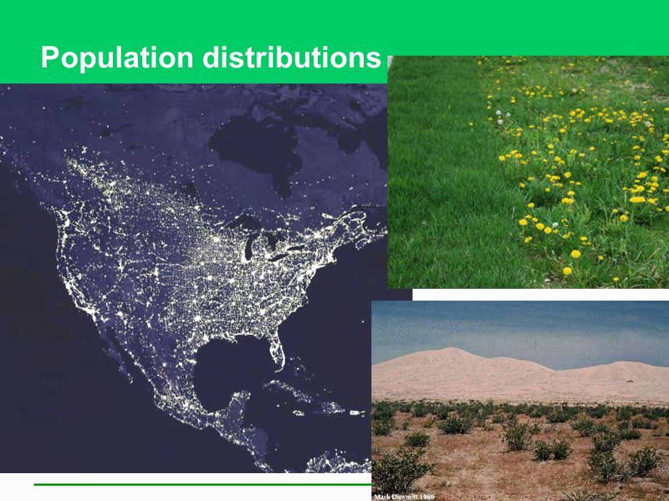 Population distributions