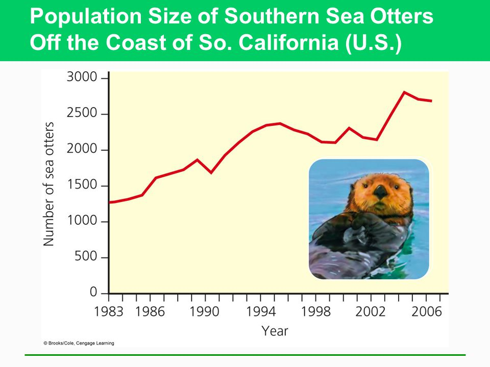 Population Size of Southern Sea Otters Off the Coast of So