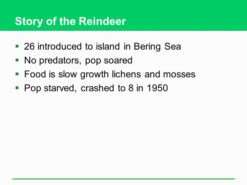 Story of the Reindeer 26 introduced to island in Bering Sea
