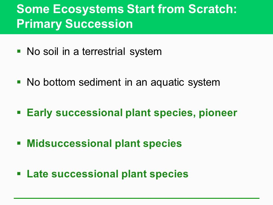 Some Ecosystems Start from Scratch: Primary Succession