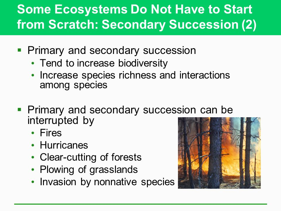 Some Ecosystems Do Not Have to Start from Scratch: Secondary Succession (2)