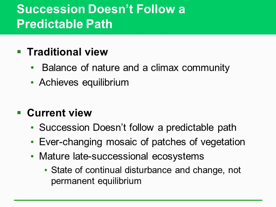 Succession Doesn't Follow a Predictable Path