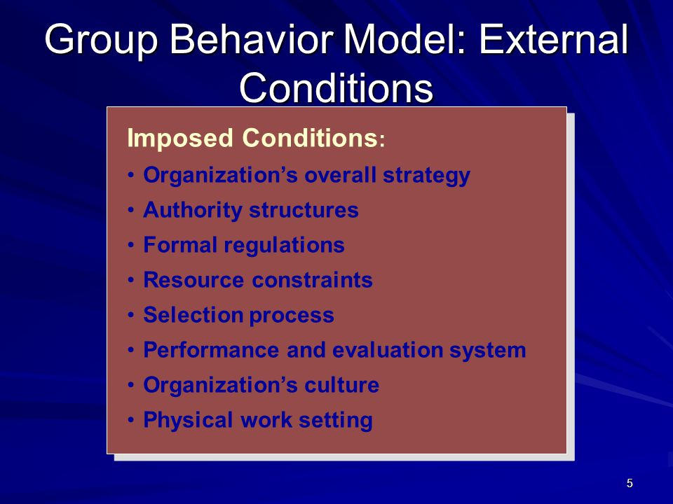 Group Behavior Model: External Conditions