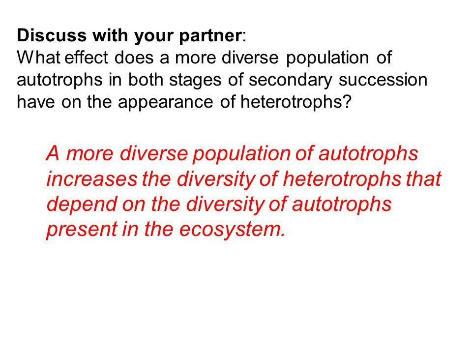 Discuss with your partner: What effect does a more diverse population of autotrophs in both stages of secondary succession have on the appearance of heterotrophs