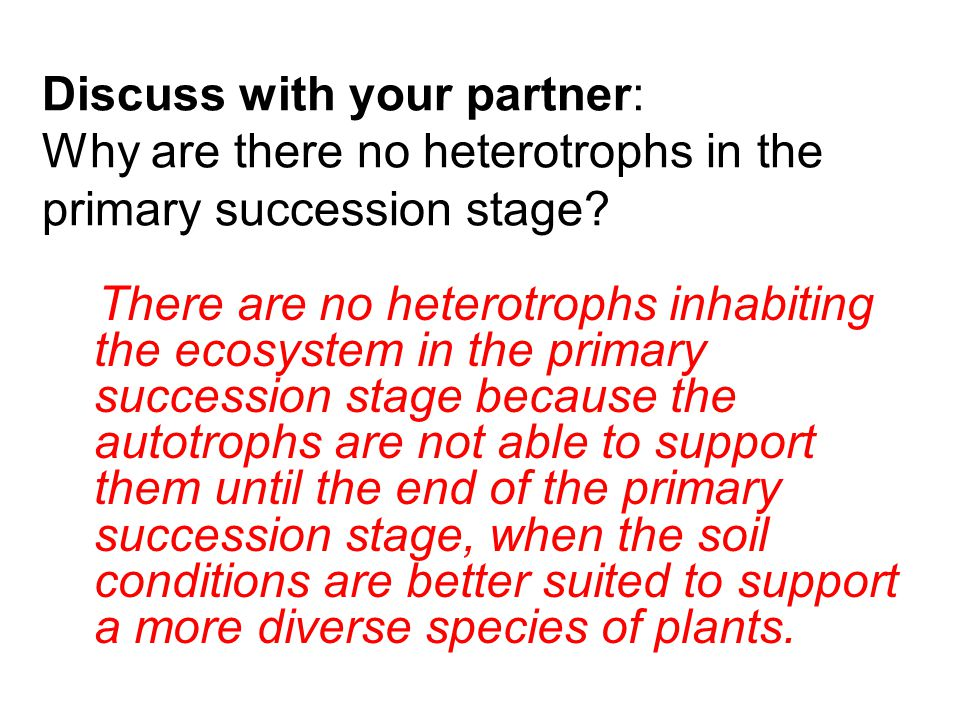 Discuss with your partner: Why are there no heterotrophs in the primary succession stage