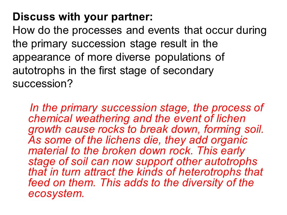 Discuss with your partner: How do the processes and events that occur during the primary succession stage result in the appearance of more diverse populations of autotrophs in the first stage of secondary succession