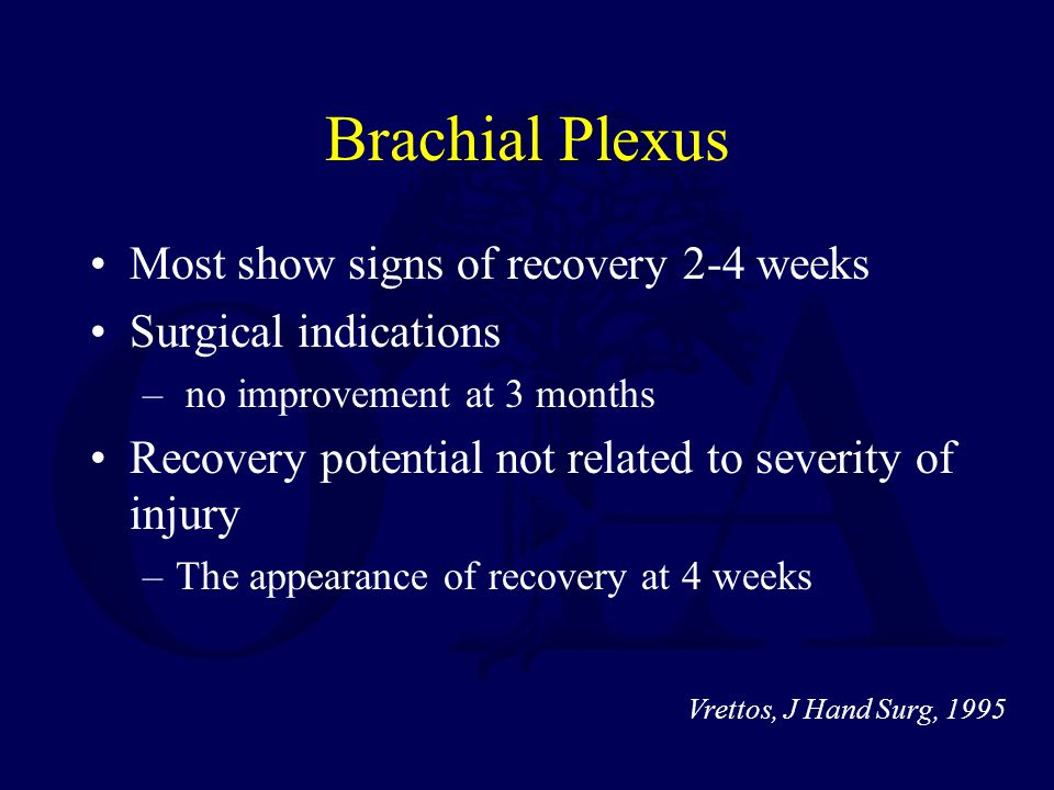 Brachial Plexus Most show signs of recovery 2-4 weeks