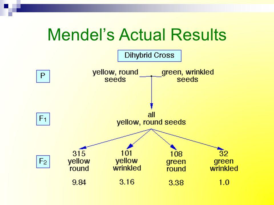 Mendel's Actual Results