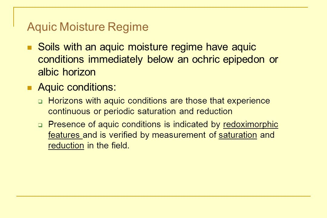 Aquic Moisture Regime Soils with an aquic moisture regime have aquic conditions immediately below an ochric epipedon or albic horizon.