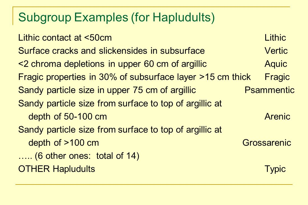Subgroup Examples (for Hapludults)