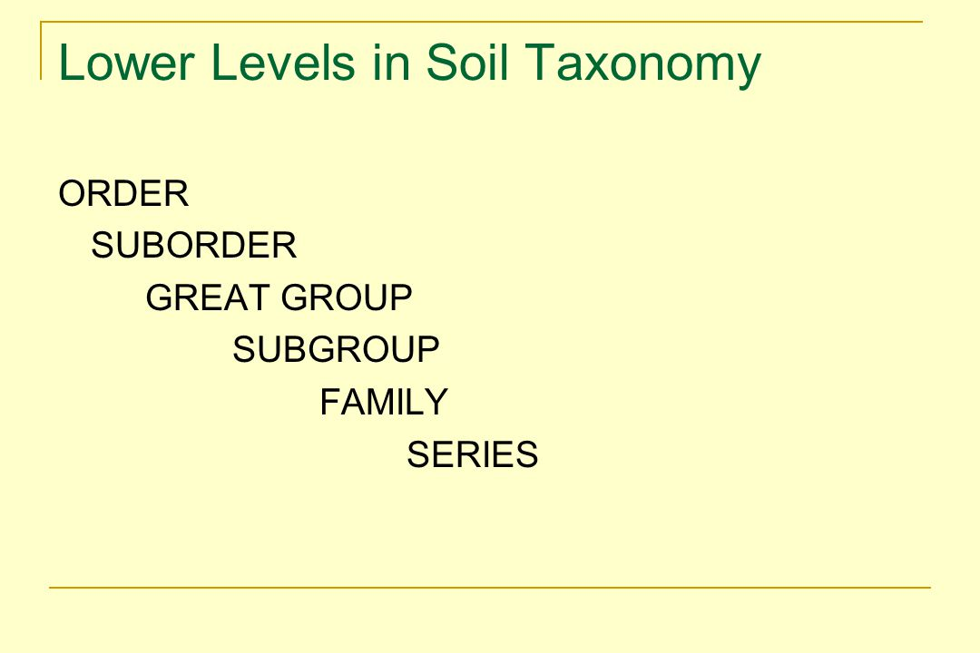 Lower Levels in Soil Taxonomy