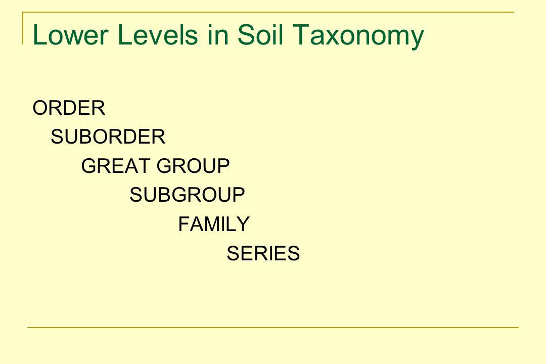 Lower Levels in Soil Taxonomy