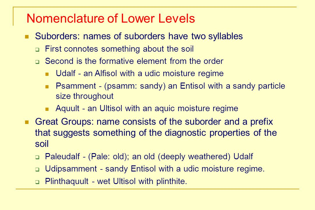 Nomenclature of Lower Levels