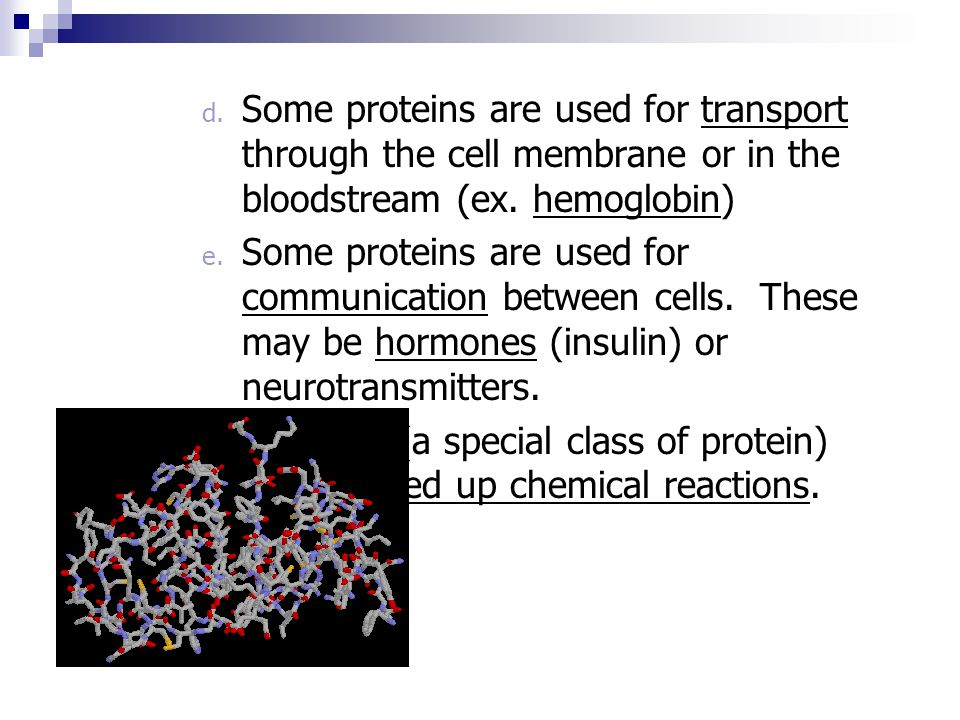 Some proteins are used for transport through the cell membrane or in the bloodstream (ex. hemoglobin)