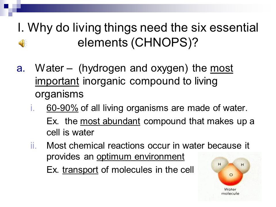 I. Why do living things need the six essential elements (CHNOPS)