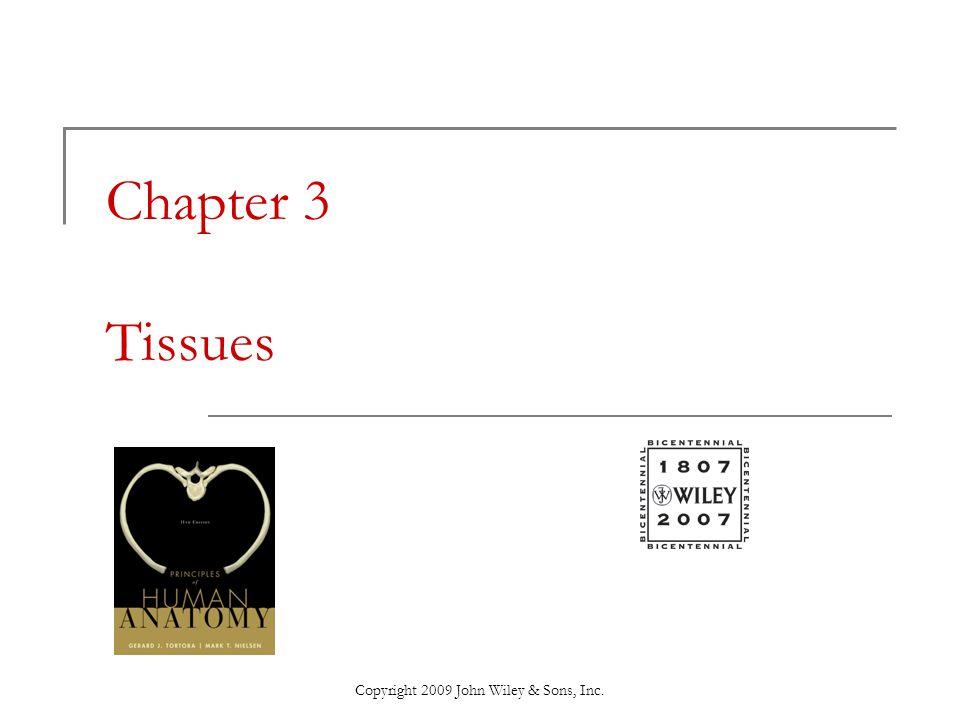 Copyright 2009 John Wiley & Sons, Inc.