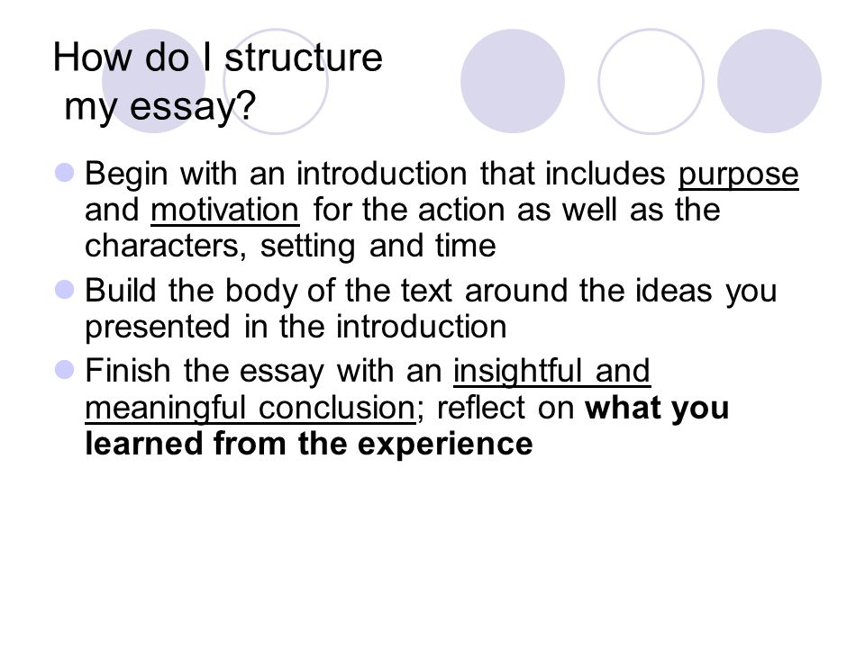 How do I structure my essay