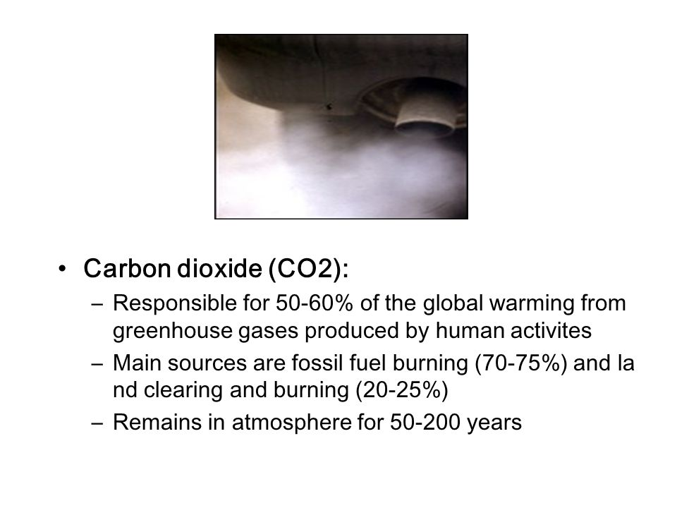 Carbon dioxide (CO2): Responsible for 50-60% of the global warming from greenhouse gases produced by human activites.