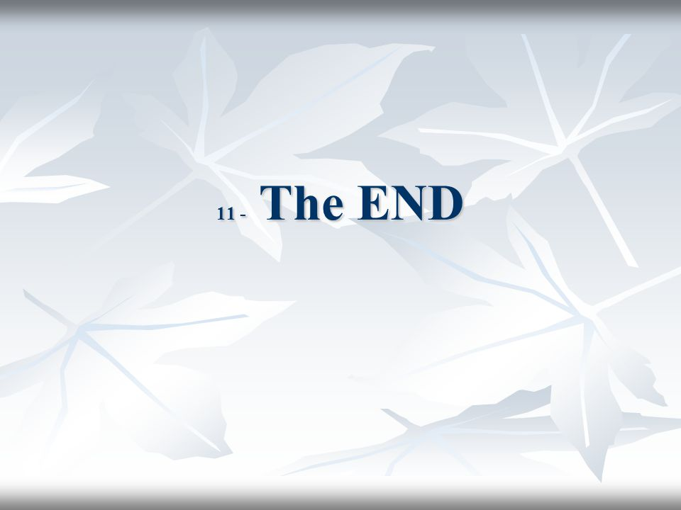 11 - The END