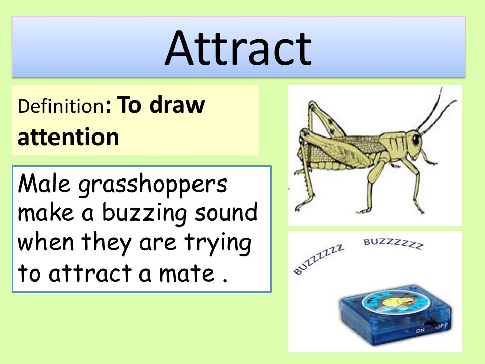 Attract Definition: To draw attention.