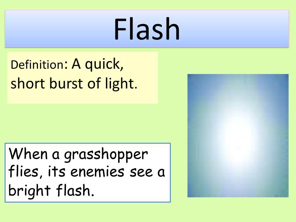 Flash When a grasshopper flies, its enemies see a bright flash.