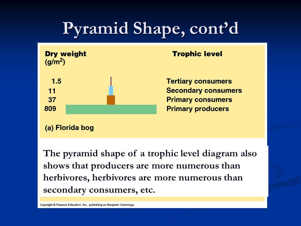 Pyramid Shape, cont'd